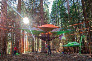 Verge's 10 Essentials for Festival Season