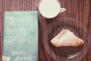 Verge Reviews: Me Talk Pretty One Day