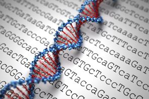 Students share DNA opinions