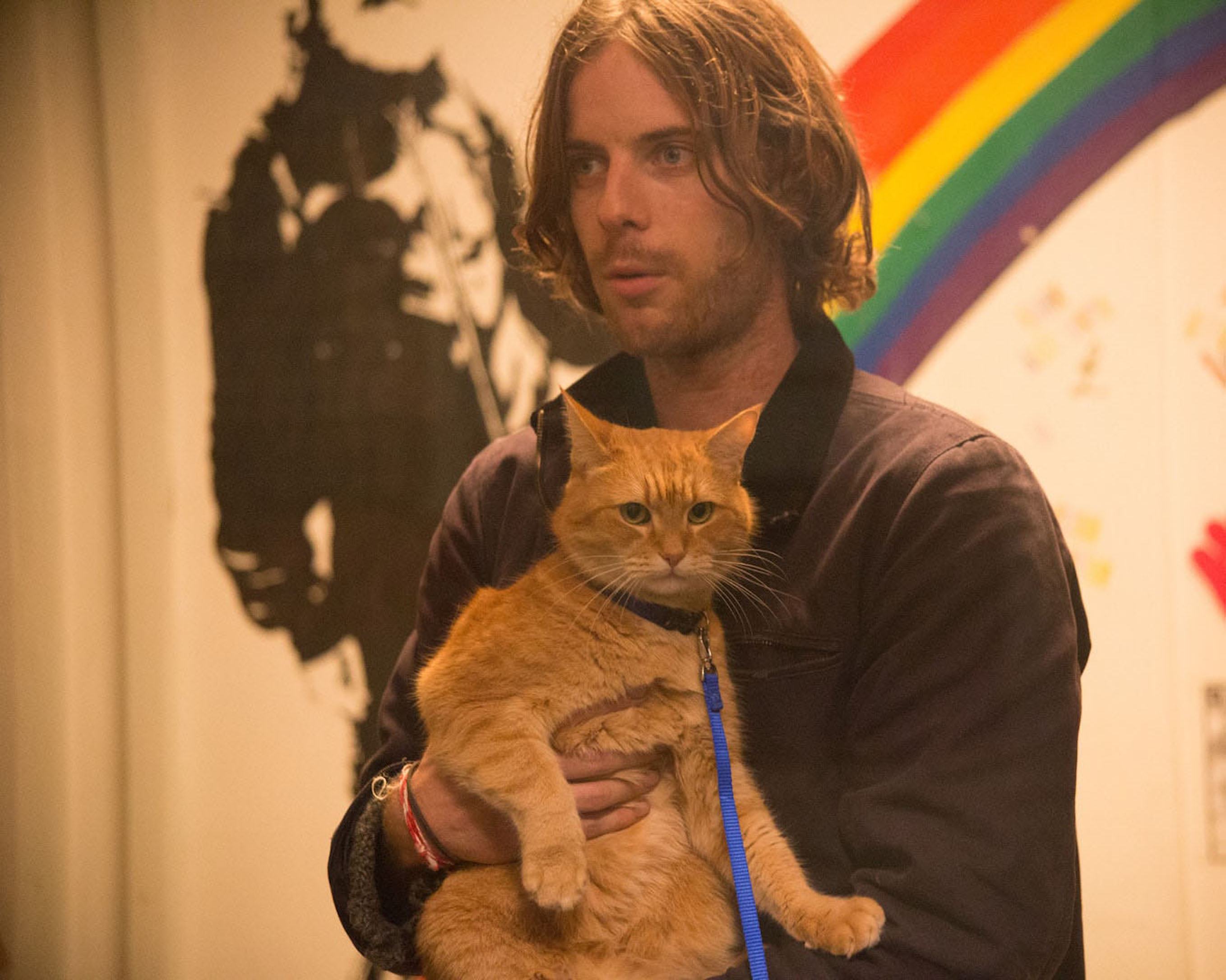 Bob, Luke Treadaway (James). Director and Co-producer Roger Spottiswoode. Producer Adam Rolston of Shooting Script Films. Screenplay adapted by Tim John and Maria Nation; based on the International Best Selling book A Street Cat Named Bob.