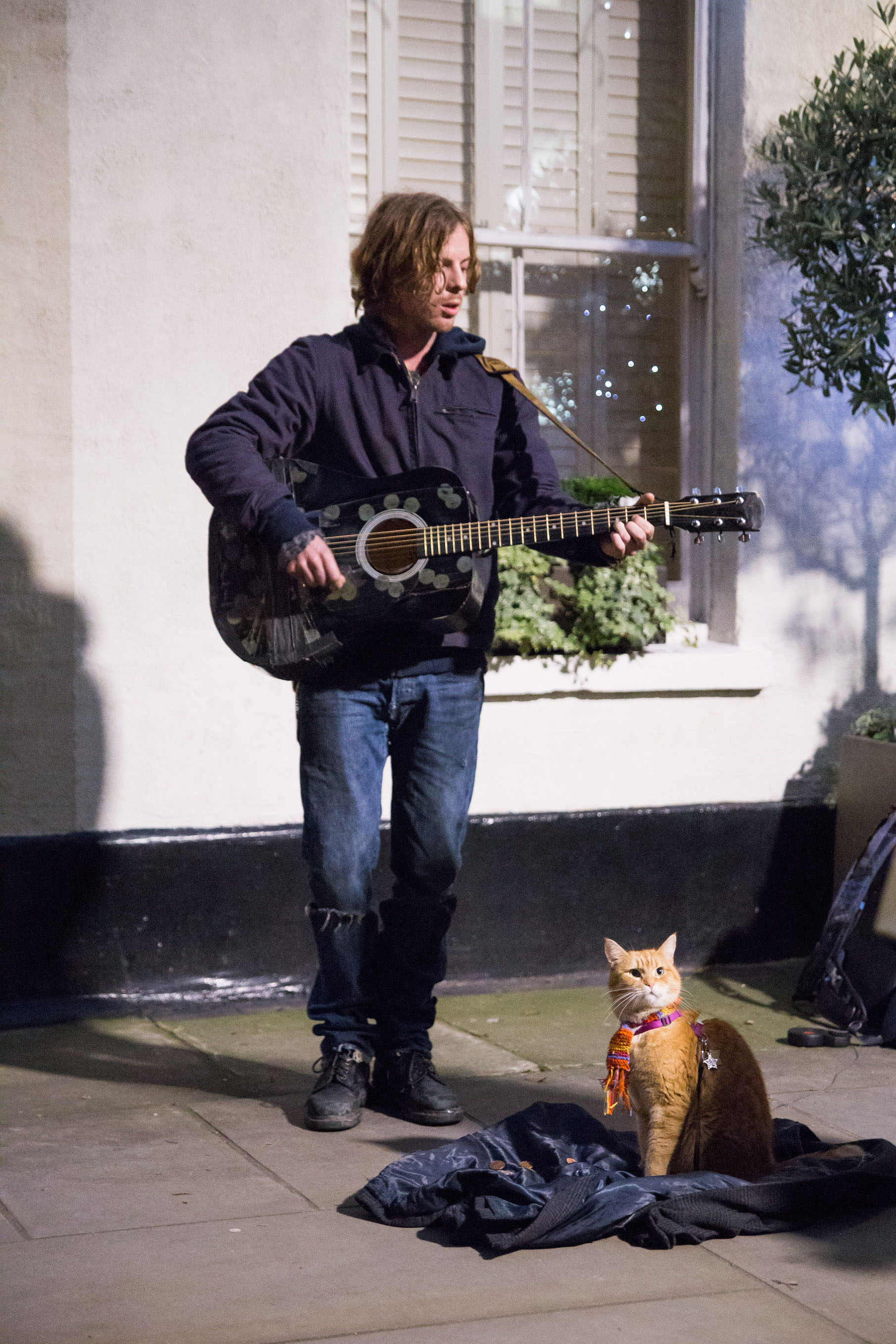 James (Luke Treadaway) and Bob in A Street Cat Named Bob. Photo