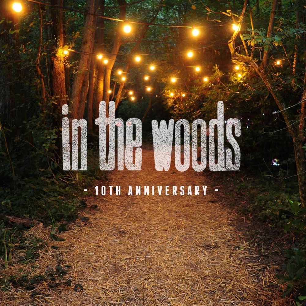 In The Woods Festival 2016 image