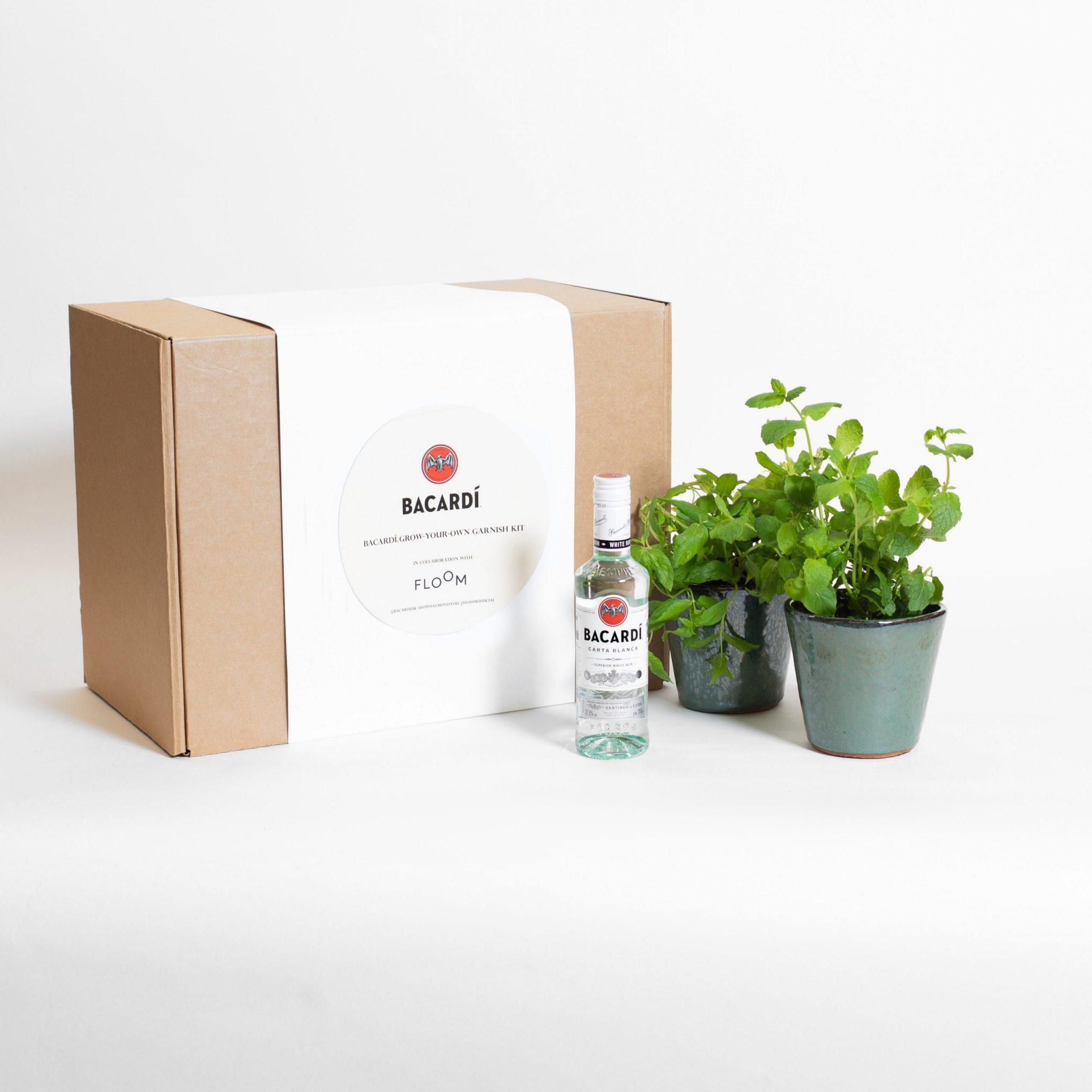 floom-oglivy-bacardi-productl-FINAL