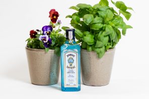 GROW-YOUR- OWN' GARNISH KITS FROM BACARDI AND FLOOM