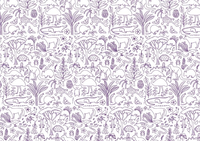 Cushelle-Colouring-Pattern